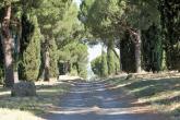 Francesco Brecciarolo - Via Appia
